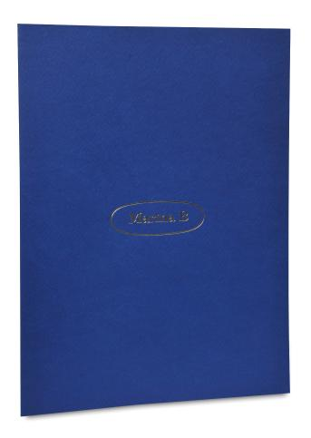 Folder , Outside Print Blue. Logo and Website Stamp foil Gold, Inside Print Black.